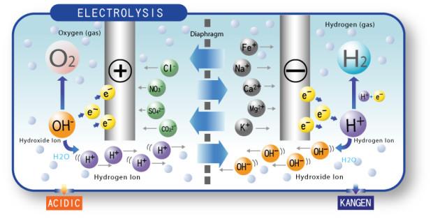 Nguyên lý hoạt động của máy lọc nước ion kiềm